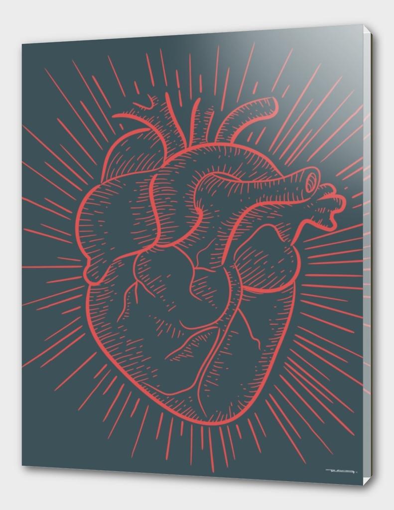 Heart on red illustration