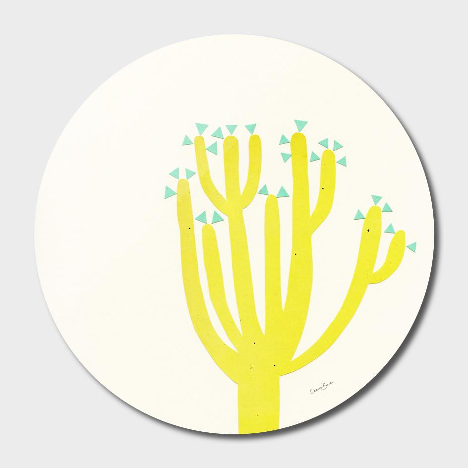 Modern Cactus