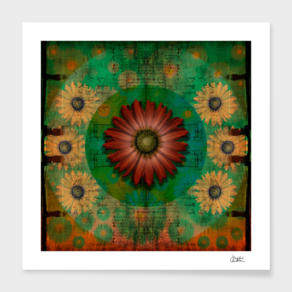 """Daisy Woman (Red Daisy, pattern)"""