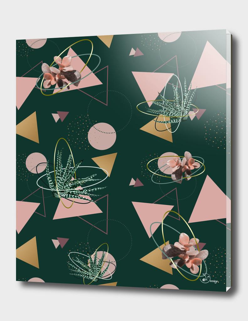 Succulents Atoms