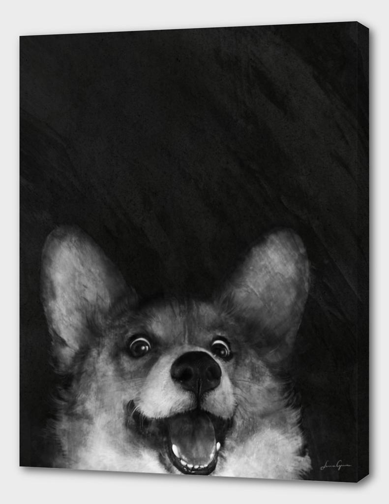 Sausage Fox