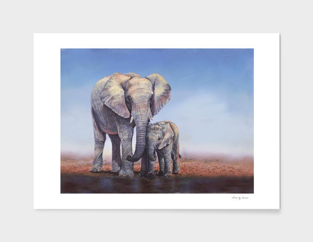 Elephants Mom Baby