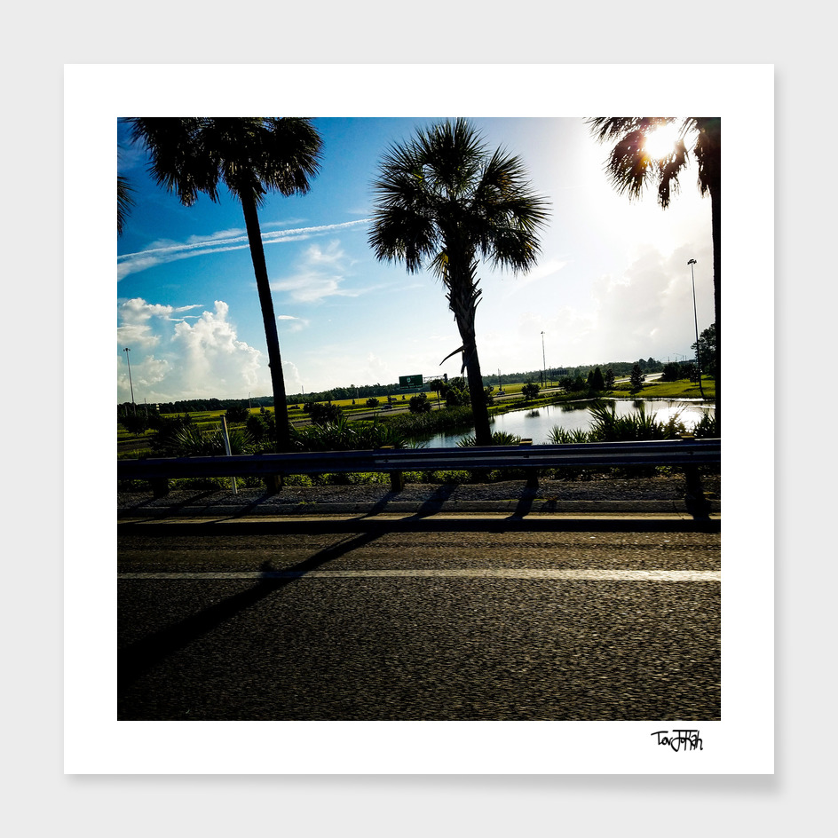 Sunny in Florida