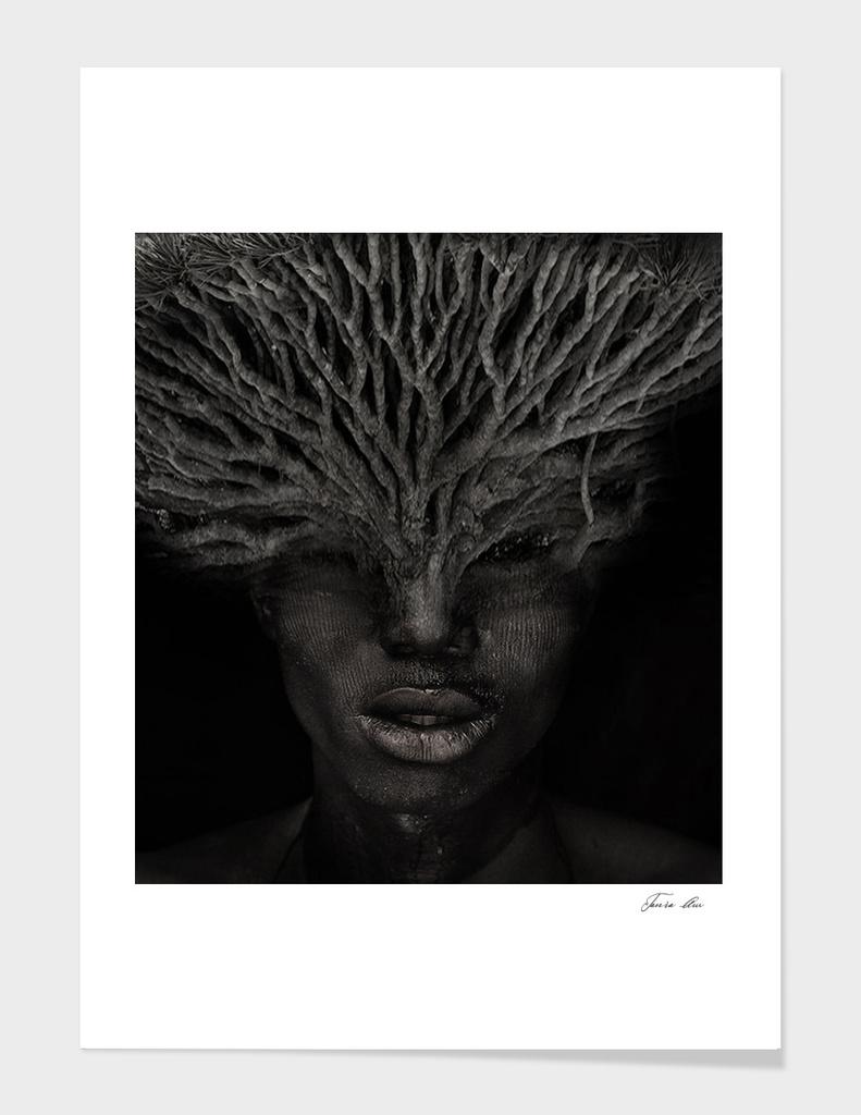 Man is a Tree
