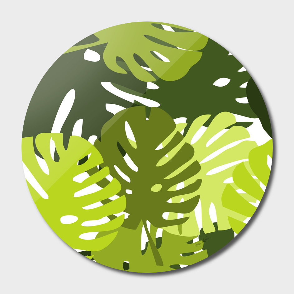 Exotic tropical leaves