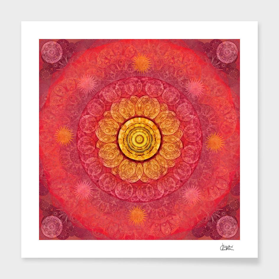 """""""Strawberry pink shades & Gold Mandala (pattern)"""""""