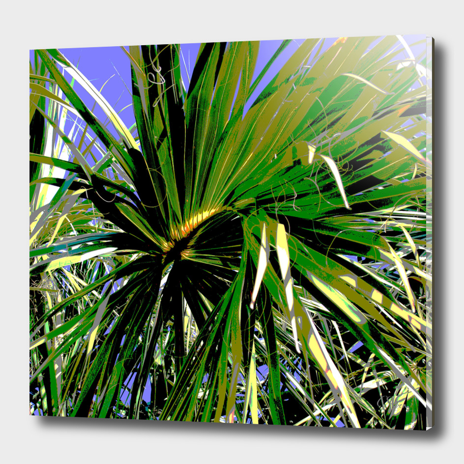 Tropical Palm DPG170618-16a