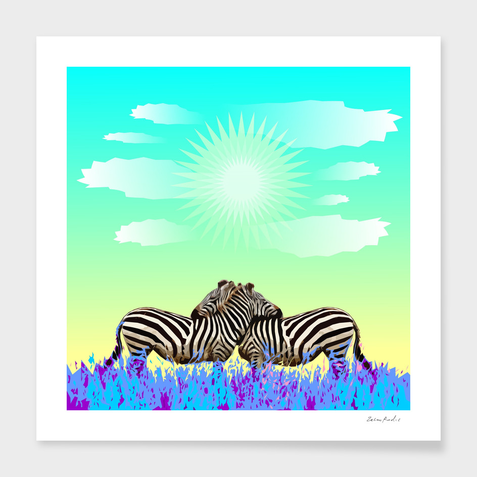 Zebras Colorful