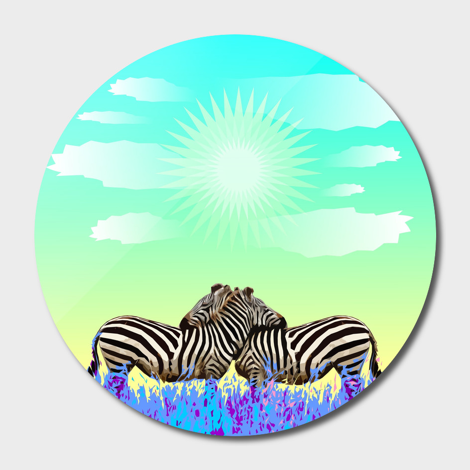 Zebras Colorful