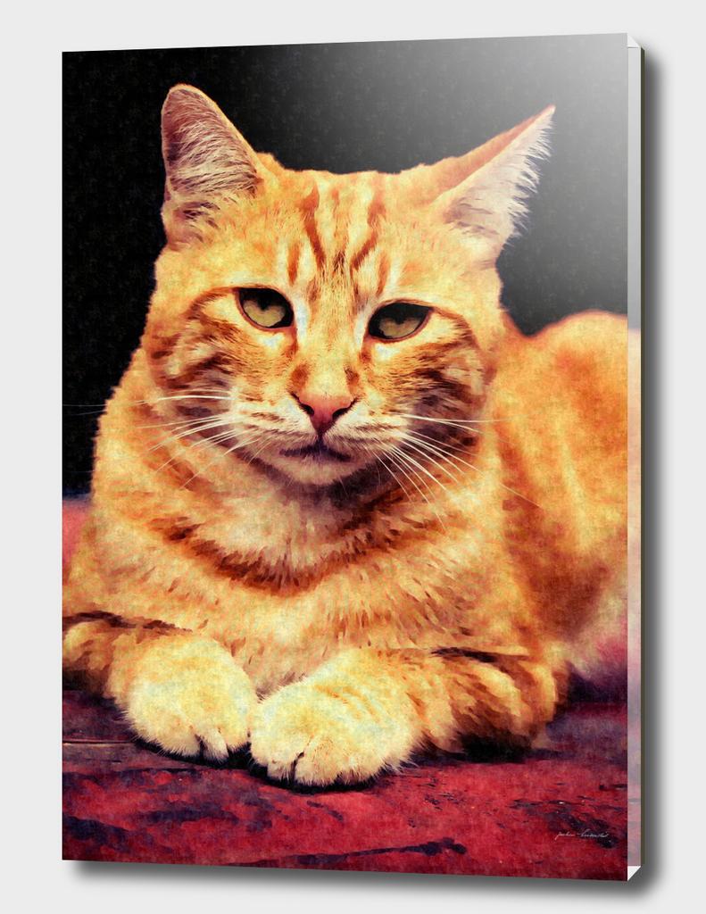Cat in Red - Digital ART Silk