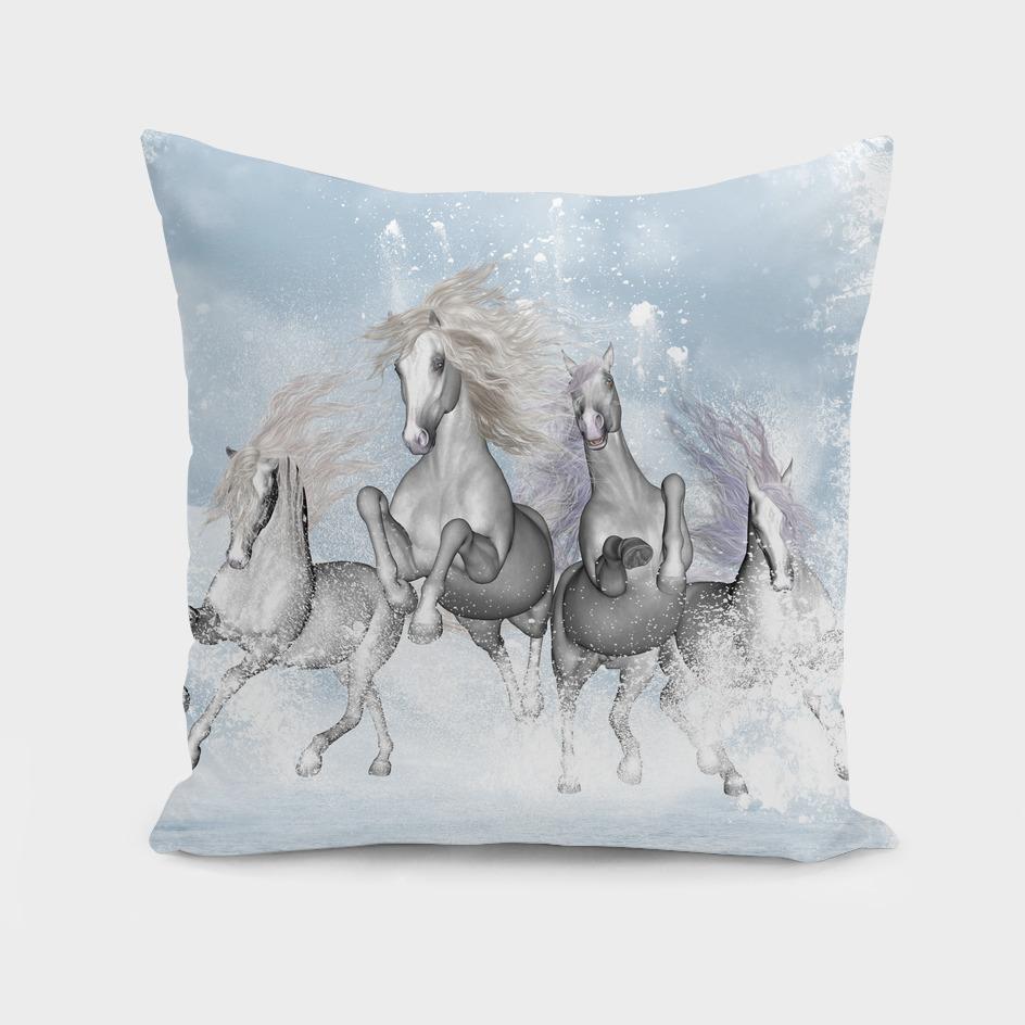 Wonderful white horses
