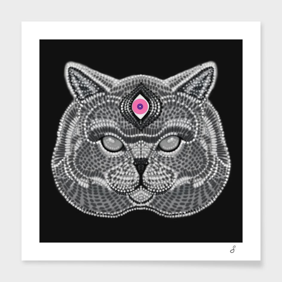 The Three Eyed Cat