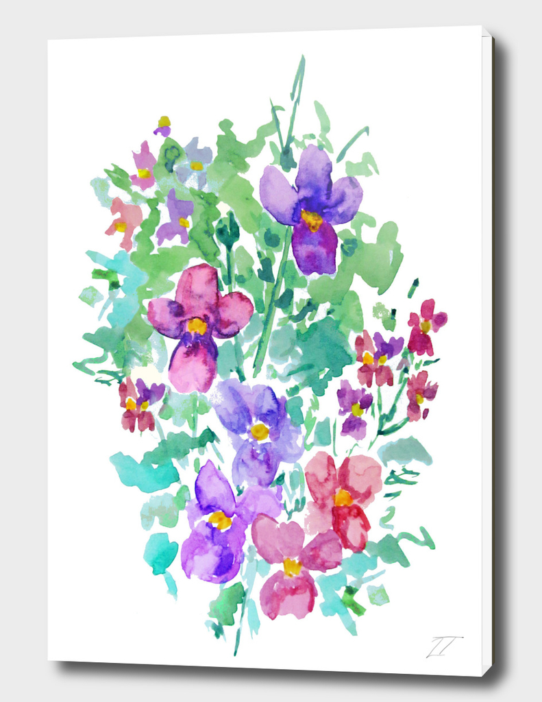 Watercolour Viola Print