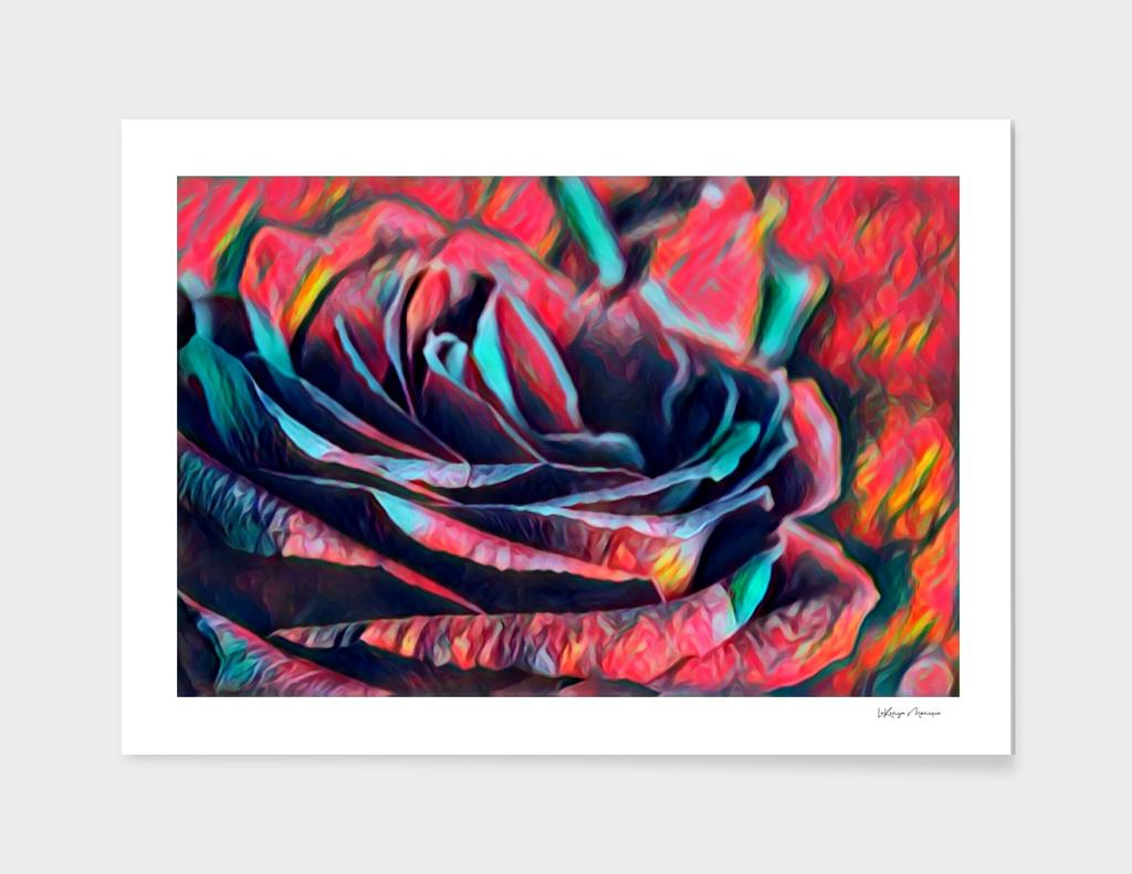 Creation's Rose