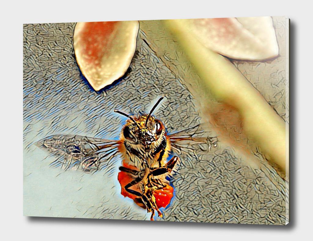Deborah The Honey Bee