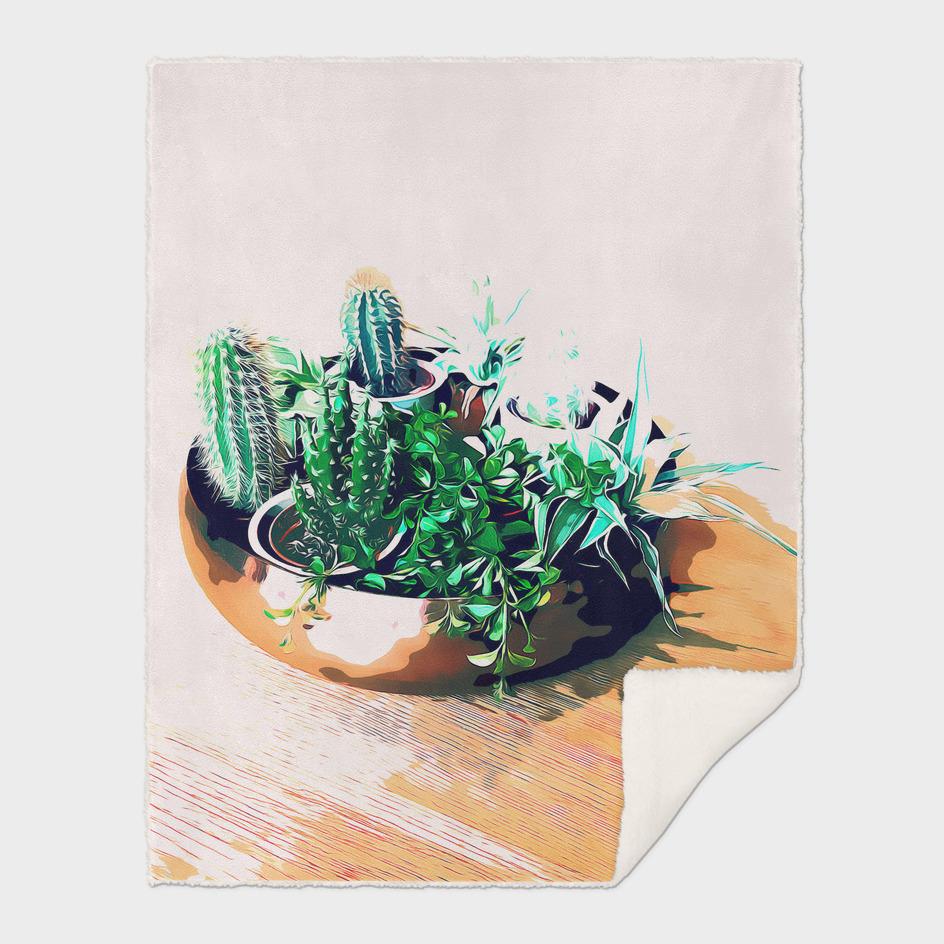 Cacti in a Copper Pot