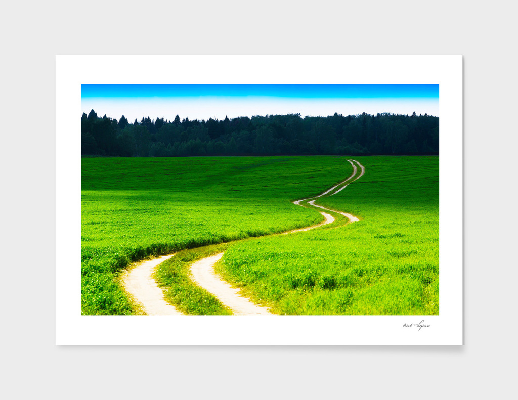 Curved countryside road to forest