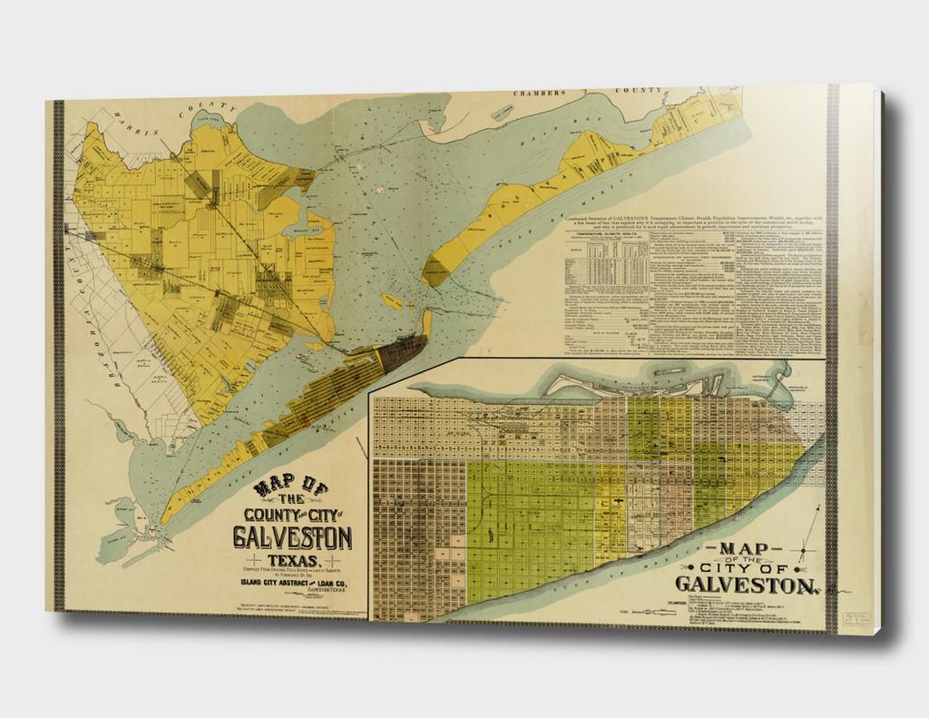 Vintage Map of Galveston Texas (1891)