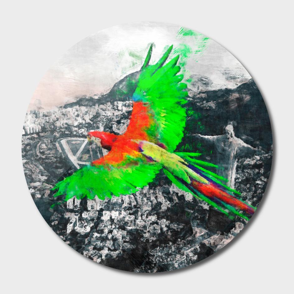 Parrot over the Rio de Janeiro sketch