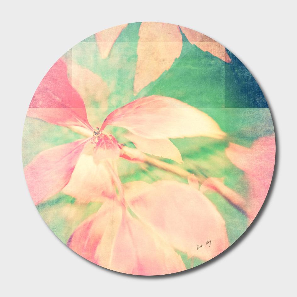 Autumn Pastels 03 - Faded Matte