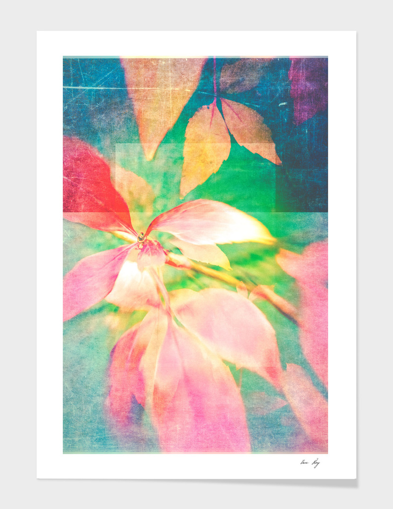 Autumn Pastels 02 - Matte