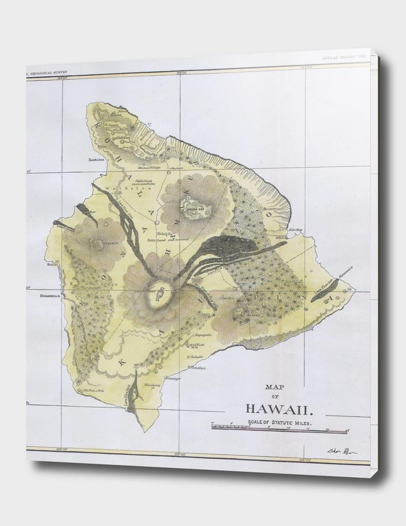 Vintage Map of Big Island Hawaii (1883)