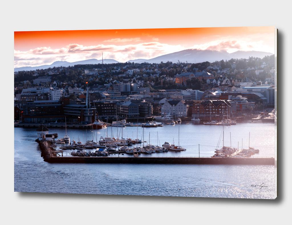 Scandinavian port