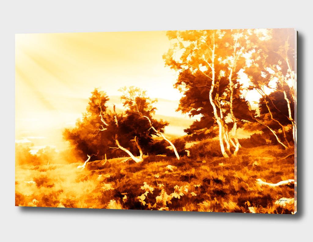 Mountain trees in dramatic light leak