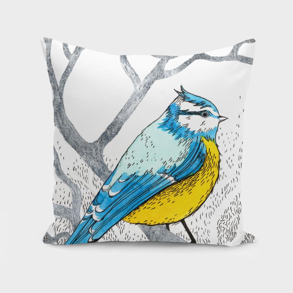 Bluetit, forest bird