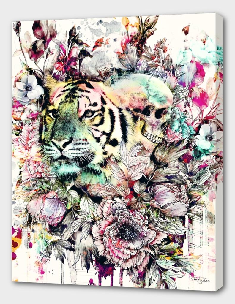 Interpretation of a dream - Tiger