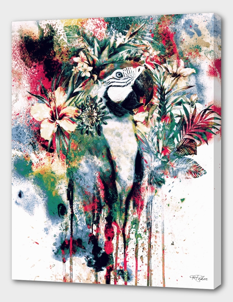 Interpretation of a dream - Parrot