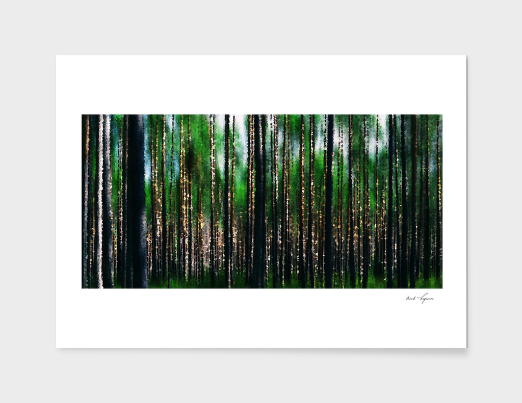 Deep forest illustration