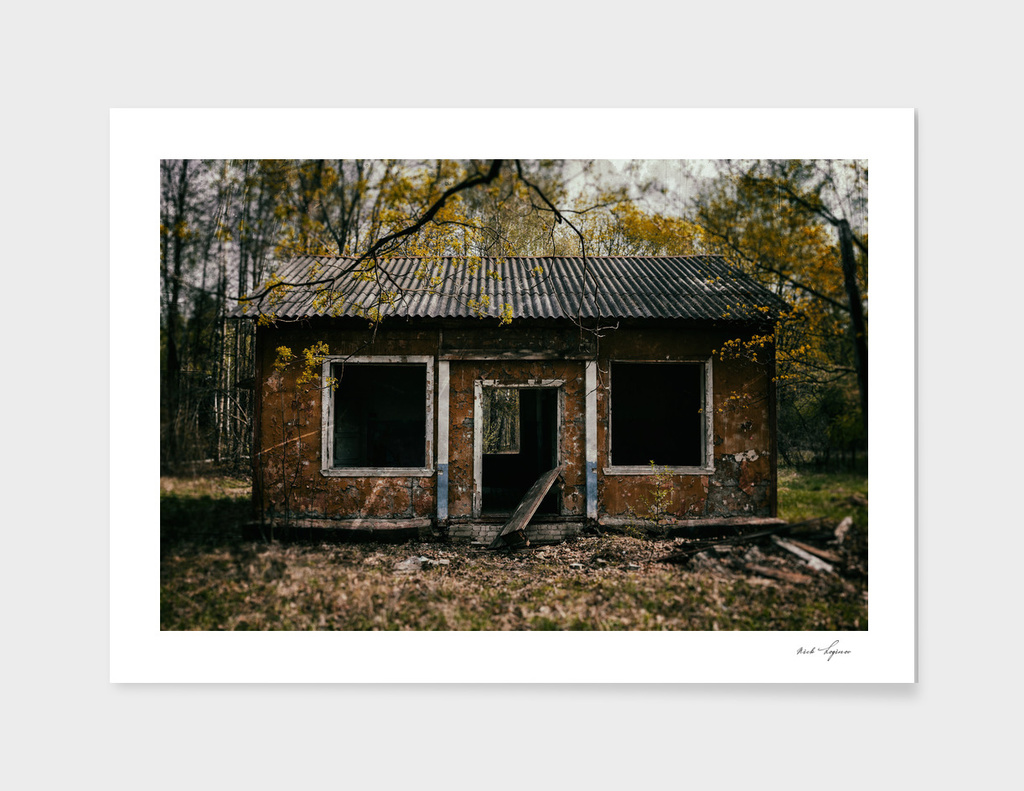 Evil dead zombie cabin