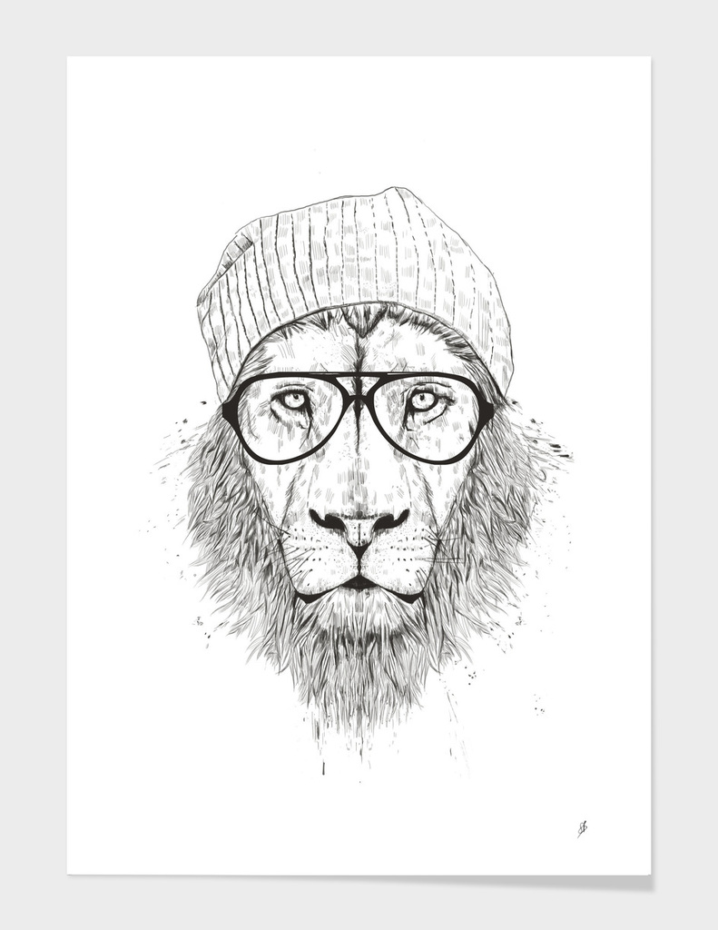 Cool lion (bw)