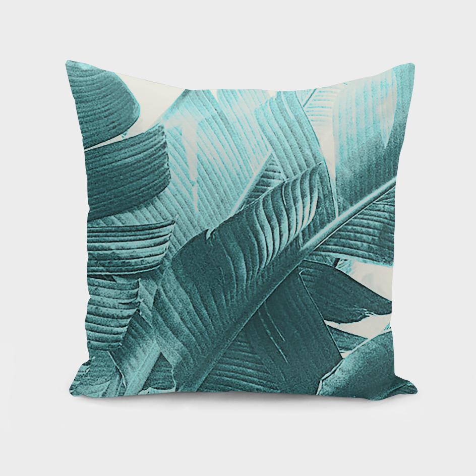 Banana Palm