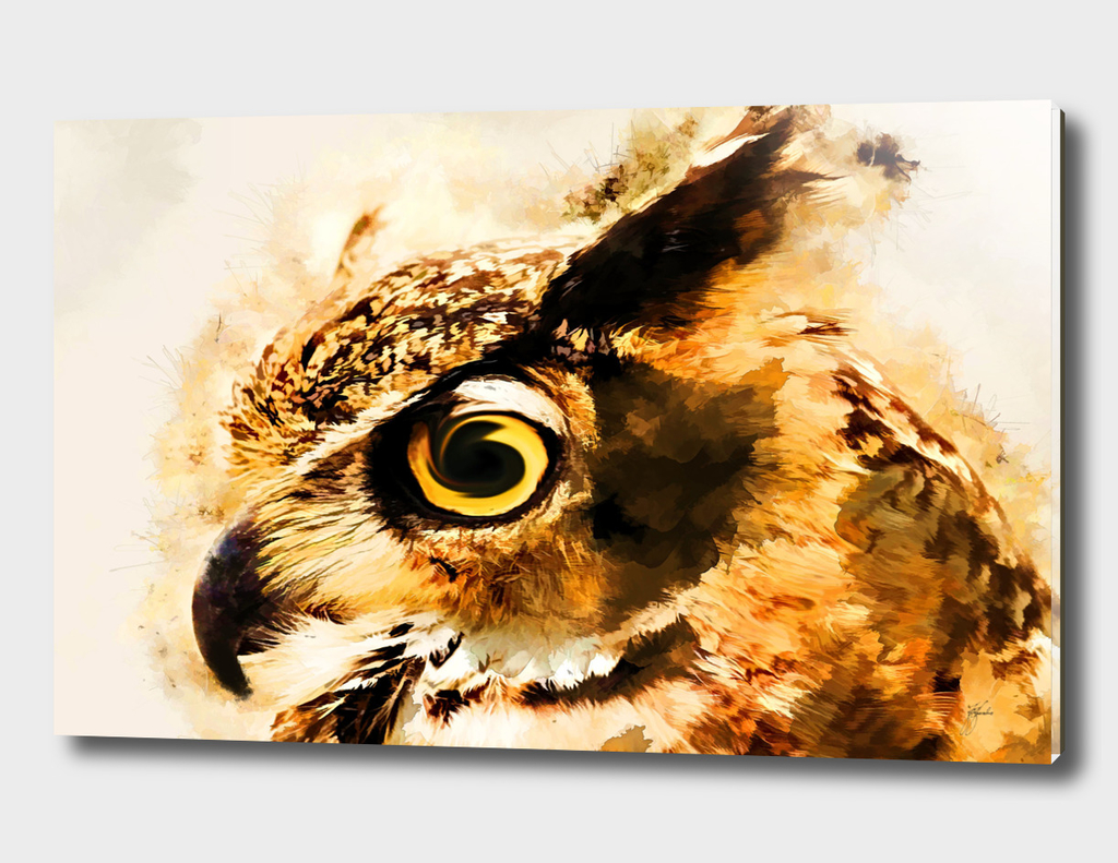 animal owl art