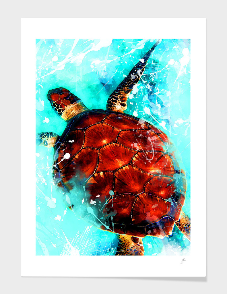 animal turtle art