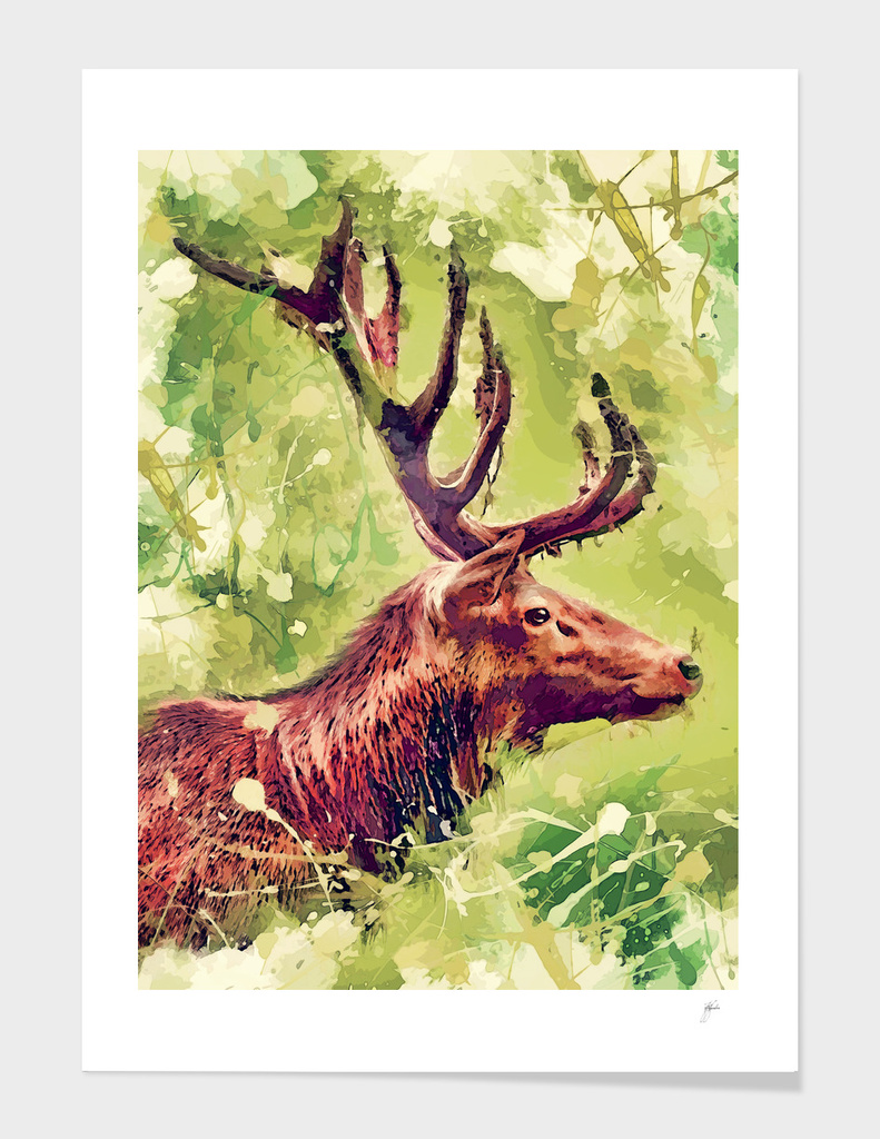 animal deer art