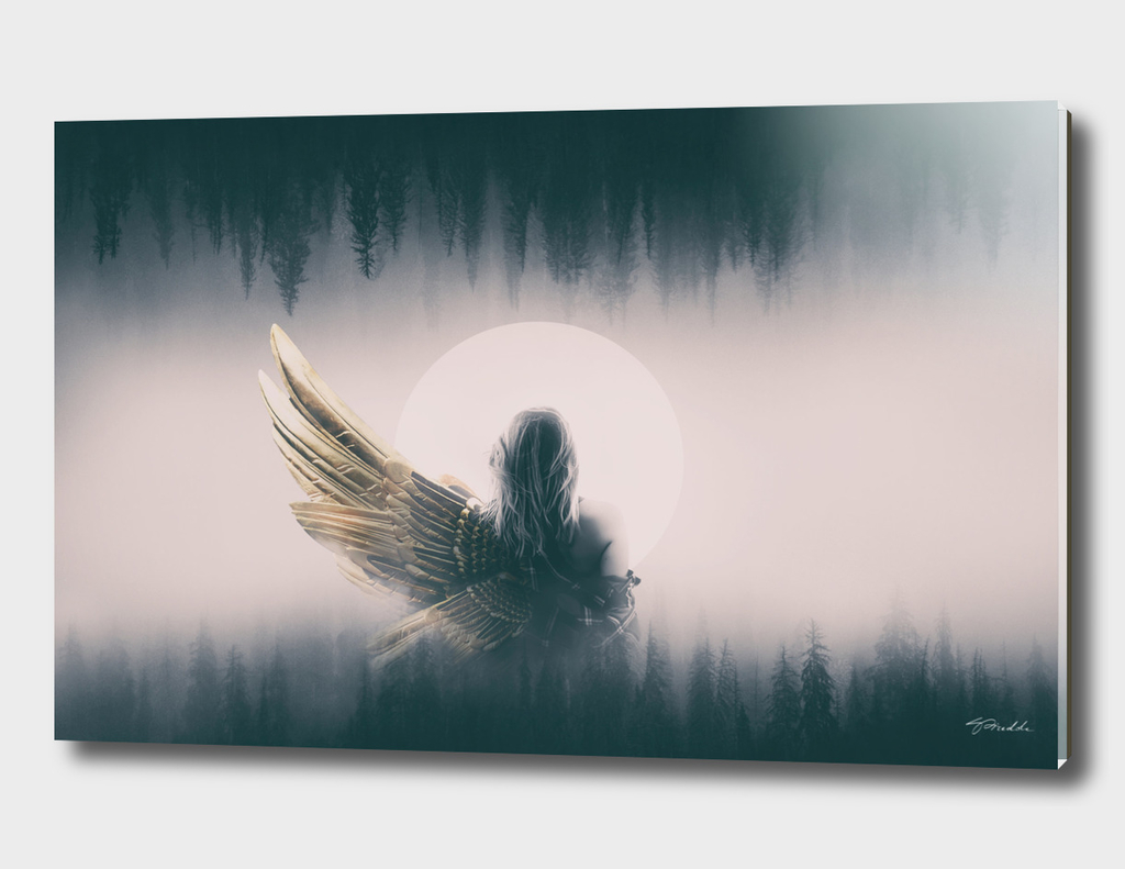 Angel with wing