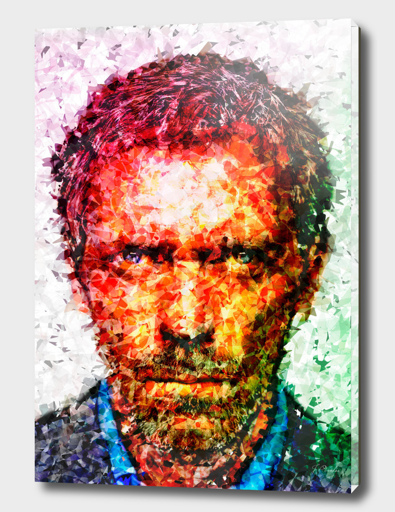 House M.D. Hugh Laurie illustration