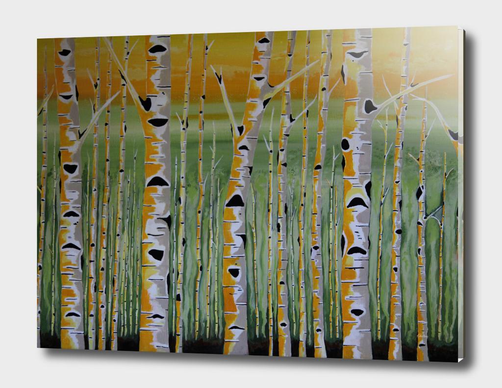 Birch Terrain