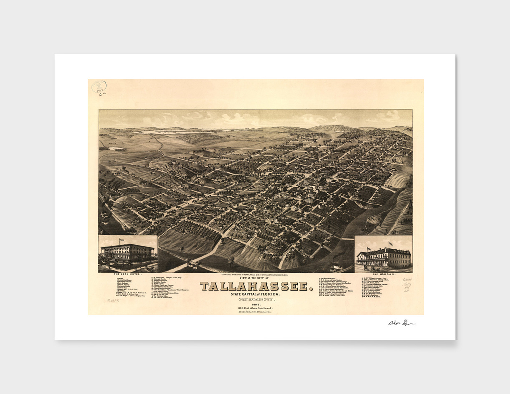Vintage Pictorial Map of Tallahassee Florida (1885)