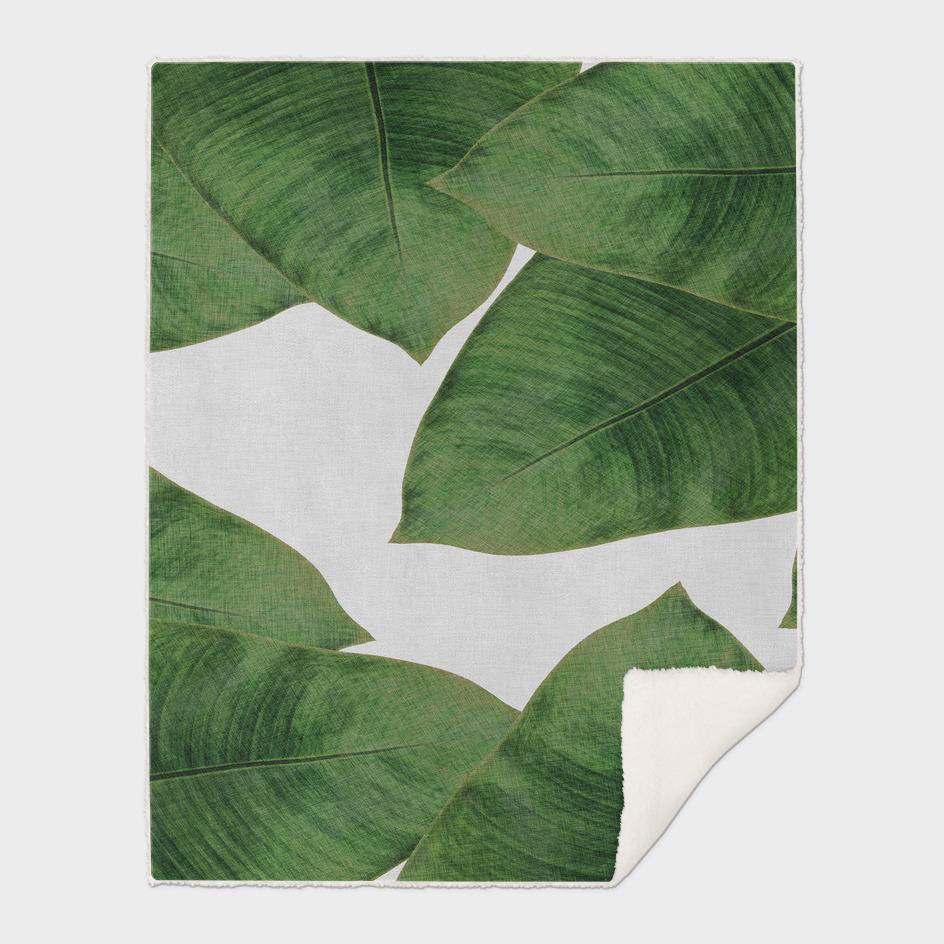 Banana Leaf I