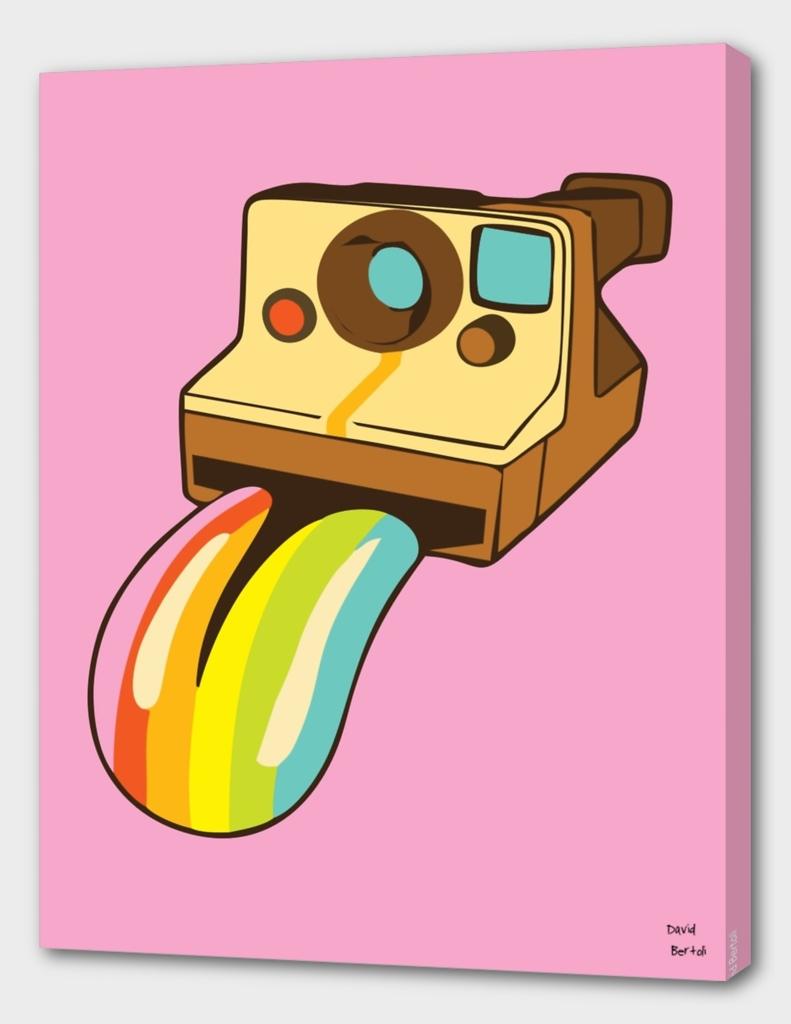 Polaroid Colors - Pink Version